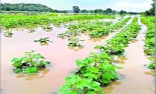 heavy rains in nirmal